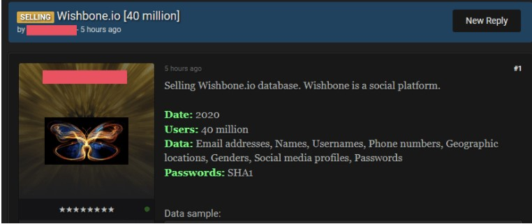 Wishbone App Scam