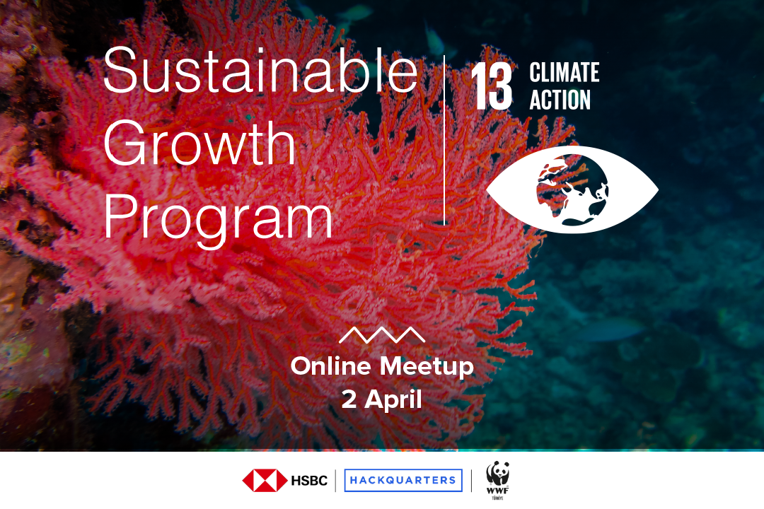 Want to know more about technologies aiming to stop and prevent Climate change join us for the first Online Meetup organized in the framework of Sustainable Growth Program powered by HSBC Turkey, WWF