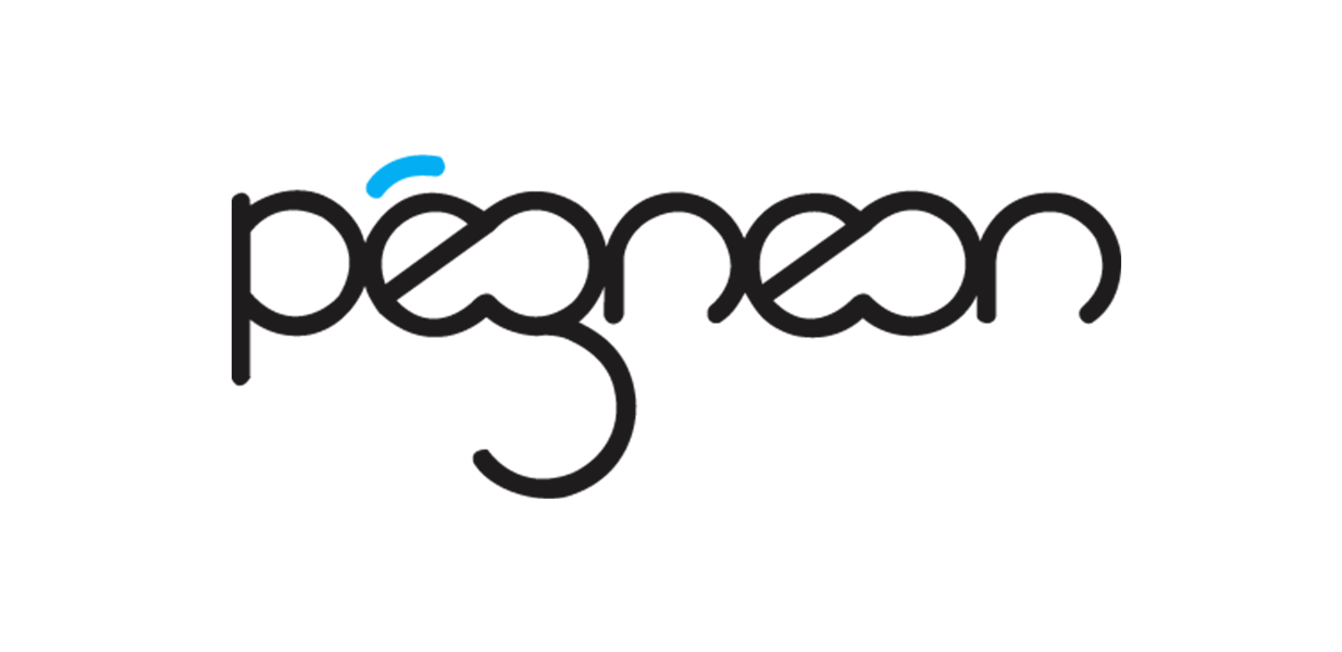 Pegneon is a serious games company specialized in developing educational video games for employee training. Eugene: a series of educational mini-games for the training of customer service agents and the GDPR game.