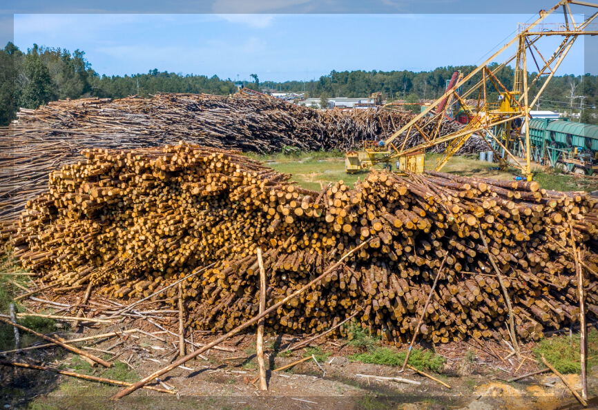 Southern Chips lumber