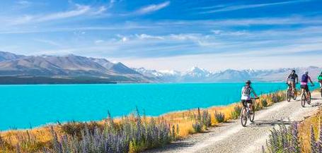 New Zealand... Do I stay or do I go?!