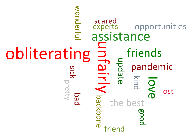 Example Word Cloud for Audience Insights