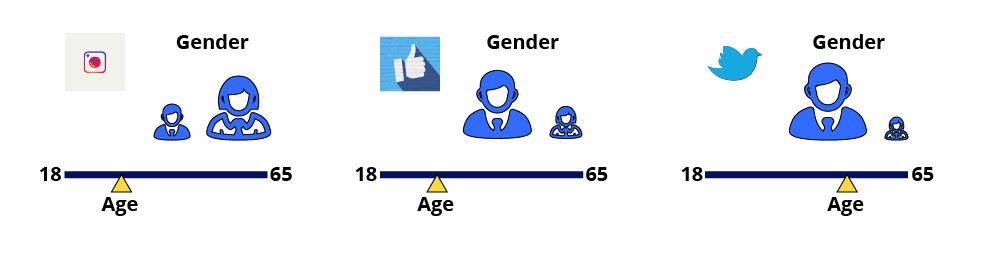 Example of Social Media Demographics by Social Media Platform
