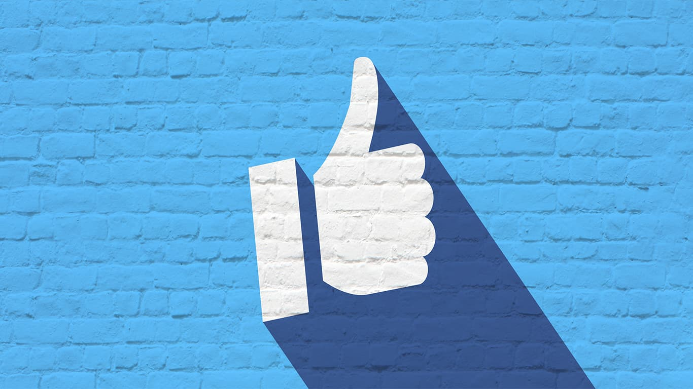 Facebook and Instagram Digital Advertising Services