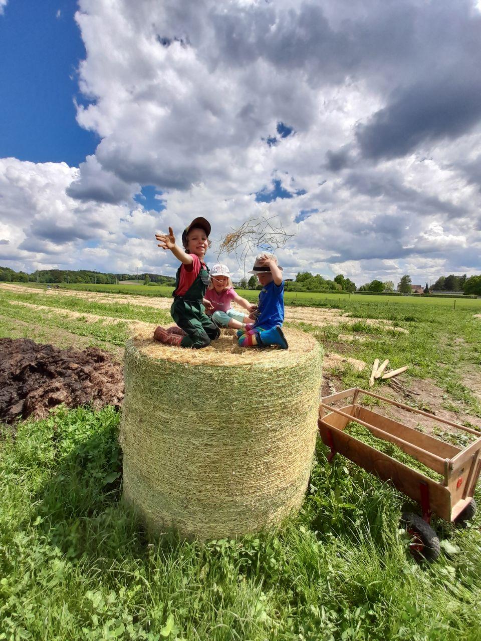 Kinder der SoLaWi auf einem Heuballen mit Bollerwagen