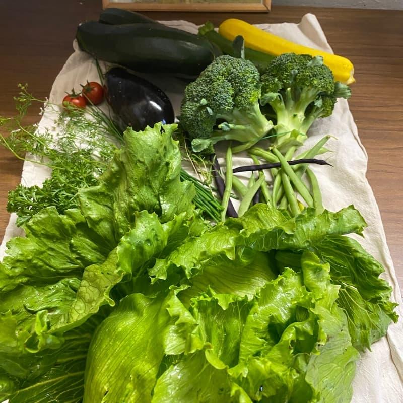 Eine kleine Gemüsekiste mit Brokolli, Zuchnini, Salat, Bohnen und Auberginen