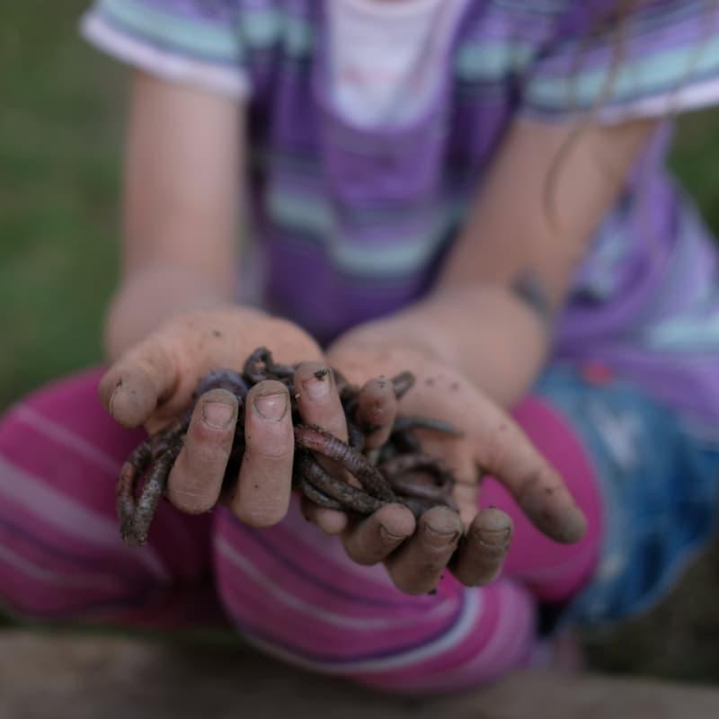 Ein Kind mir Erde und Regenwürmern in der Hand