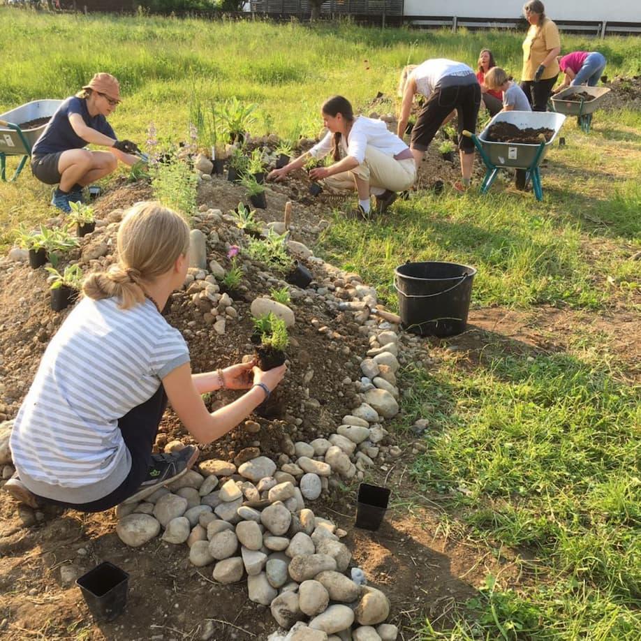 Mitglieder vom Kerschbaumerhof pflanzen Kräuter und Blumen in einem Hügelbeet