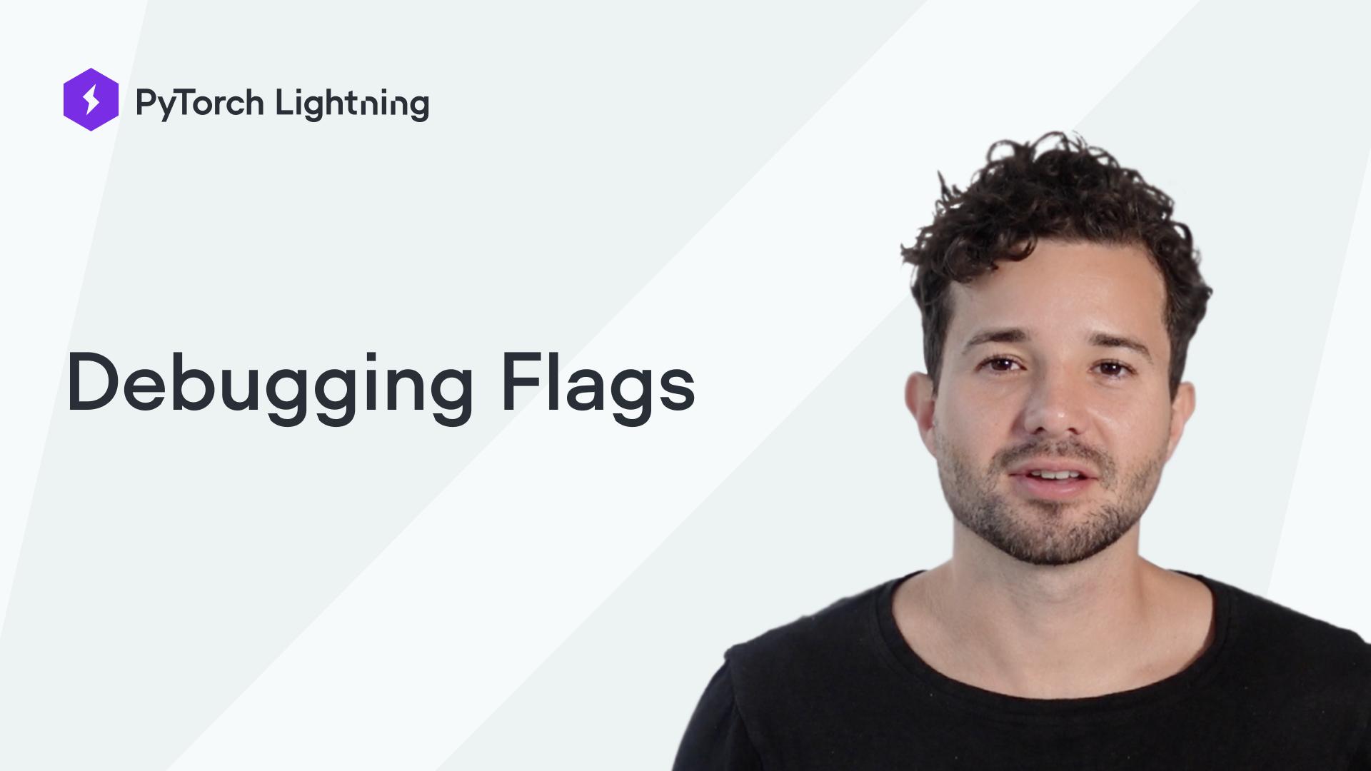 Debugging Lightning Flags