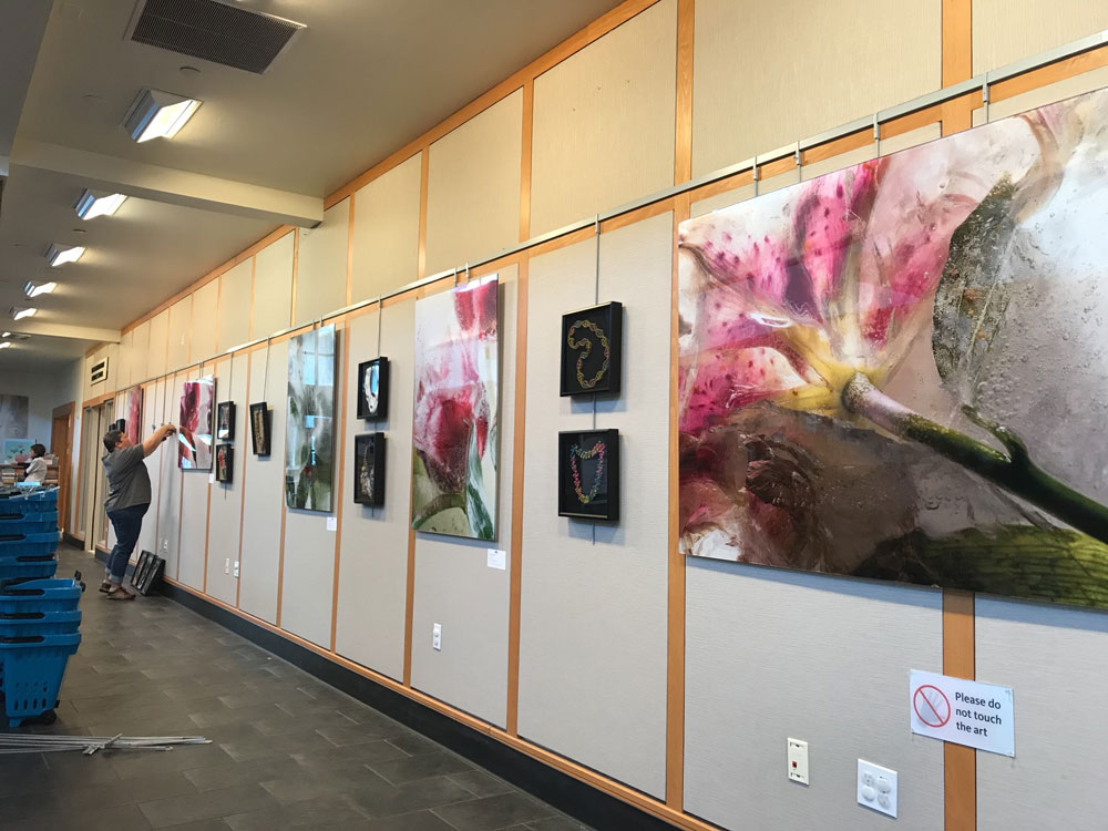 Saratoga Public Library Art Display