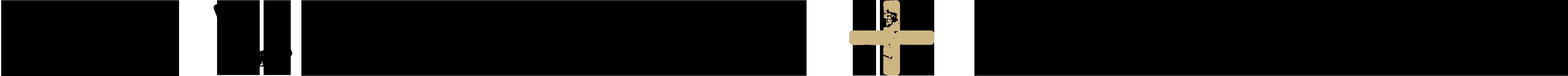 615 Leverage + Strategy horizontal logo