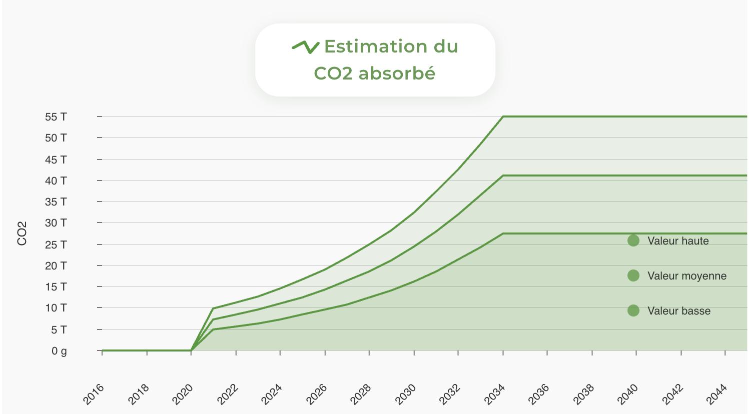 Estimation du C02 absorbé par les pins maritimes de la forêt de Malicorne