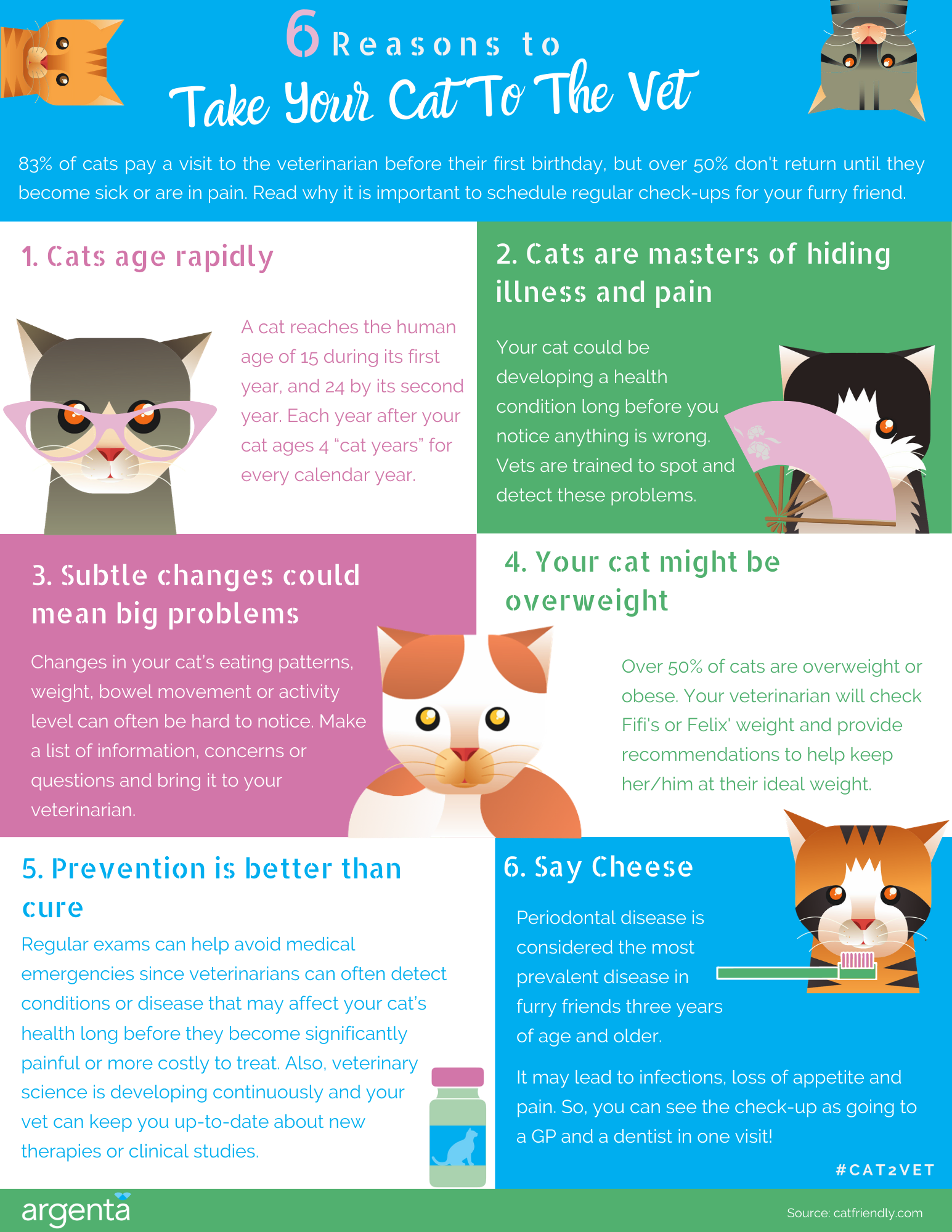 6 Reasons to Take Your Cat to the Vet
