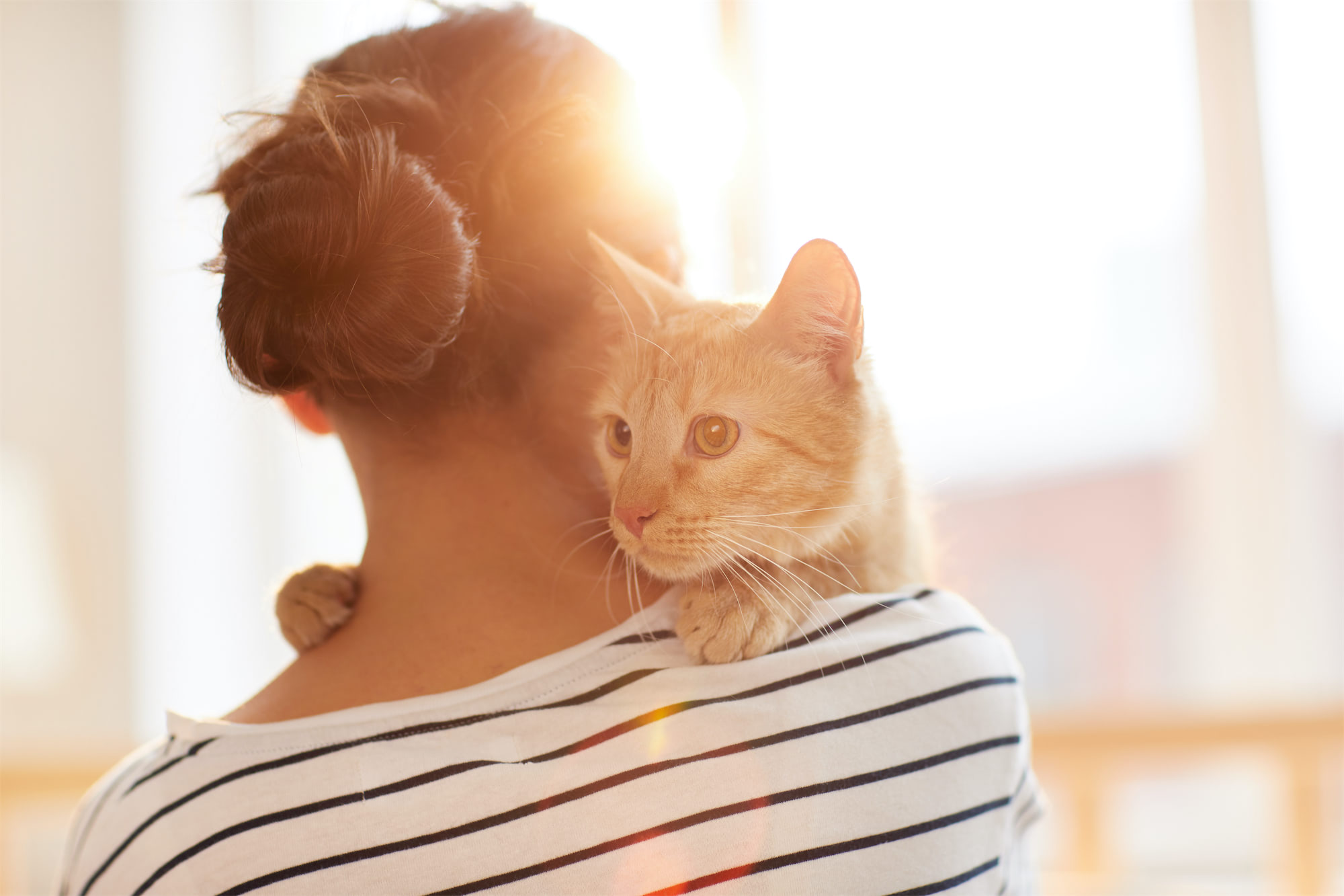 A woman holding her cat on her shoulder