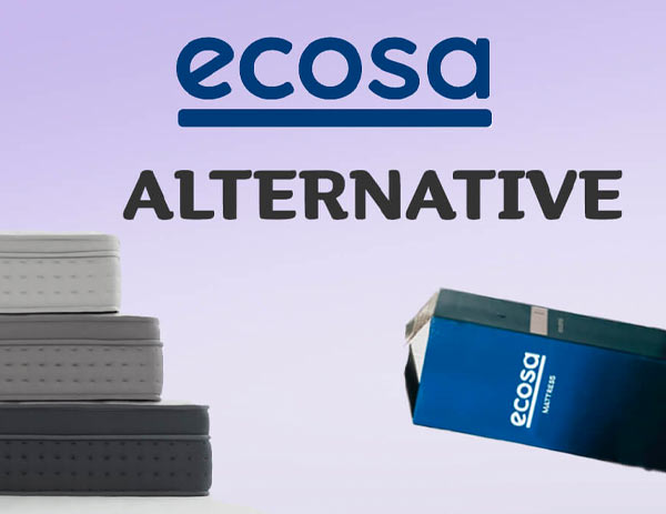 Best Ecosa Alternative in 2021