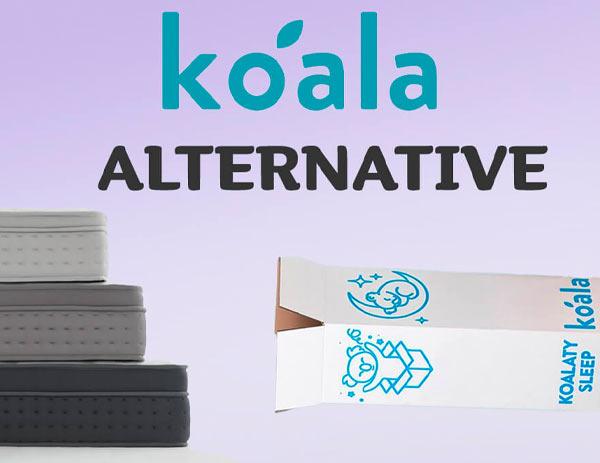 Best Koala Alternative in 2021