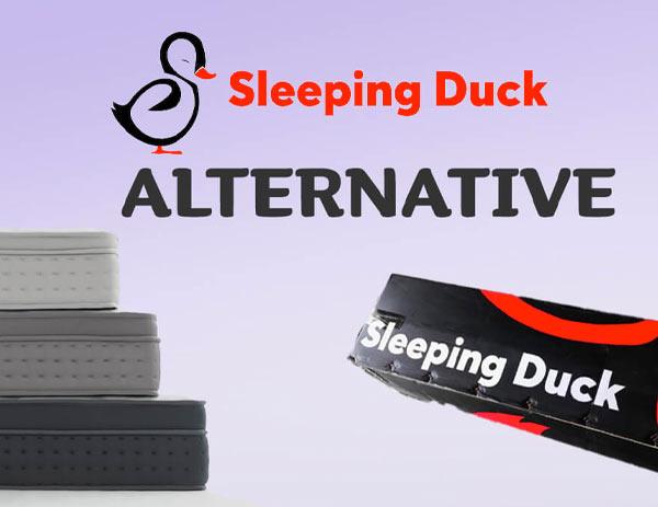 Best Sleeping Duck Alternative in 2021
