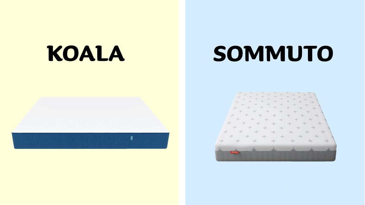 Koala vs Sommuto