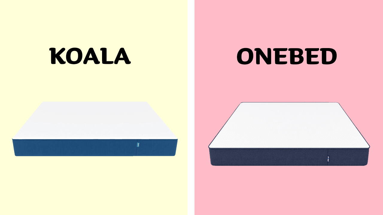 Koala vs Onebed