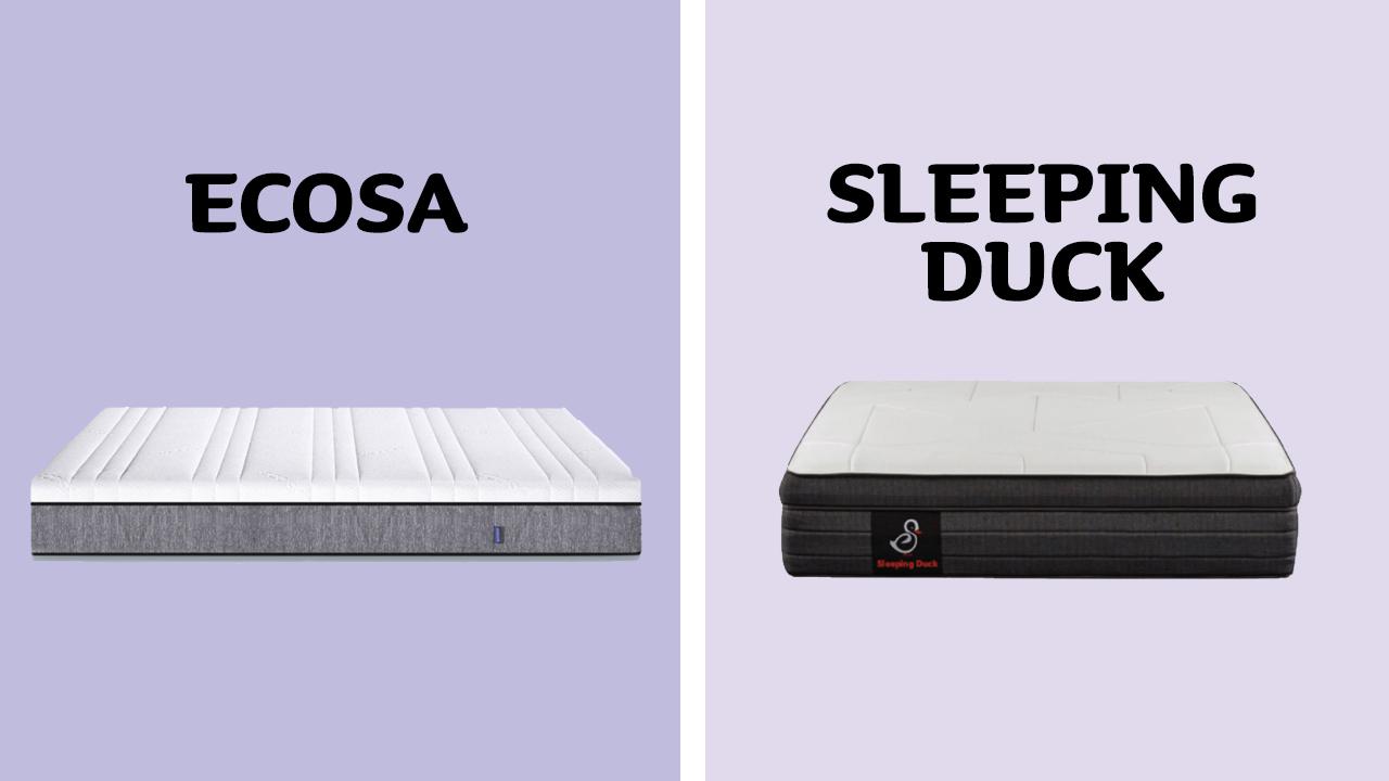 Ecosa vs Sleeping Duck