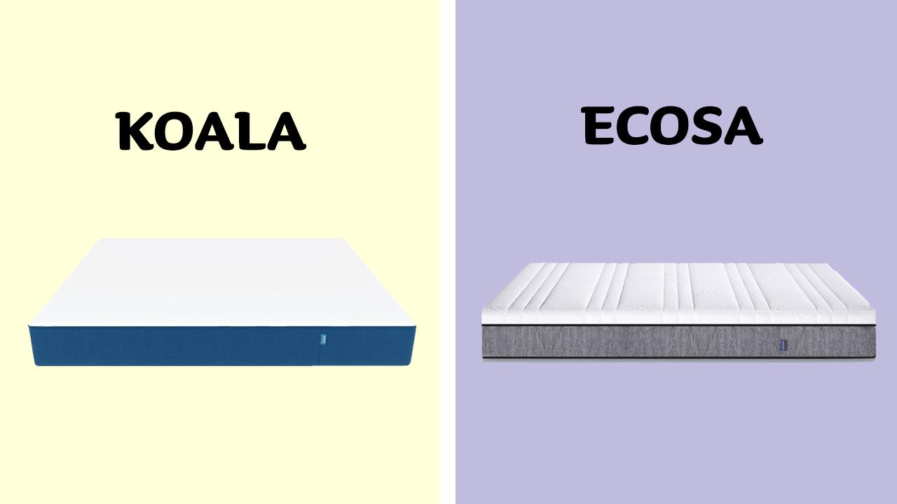 Koala vs Ecosa