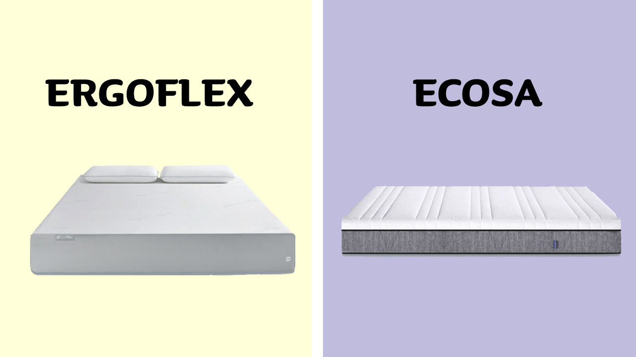 Ergoflex vs Ecosa