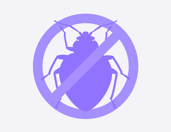 How To Get Rid Of Bedbugs On A Mattress?