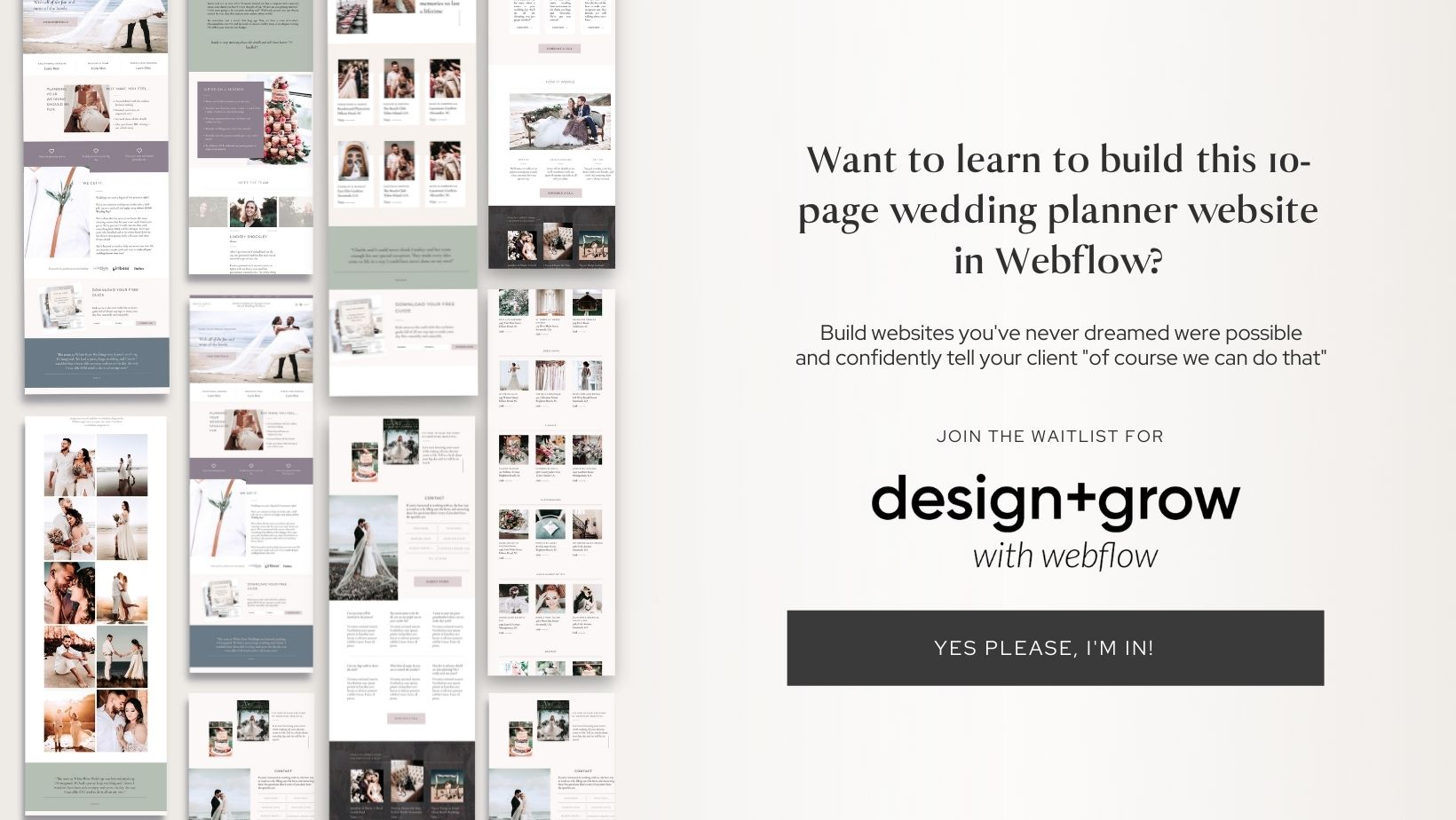 webflow course for creatives designers and website designers