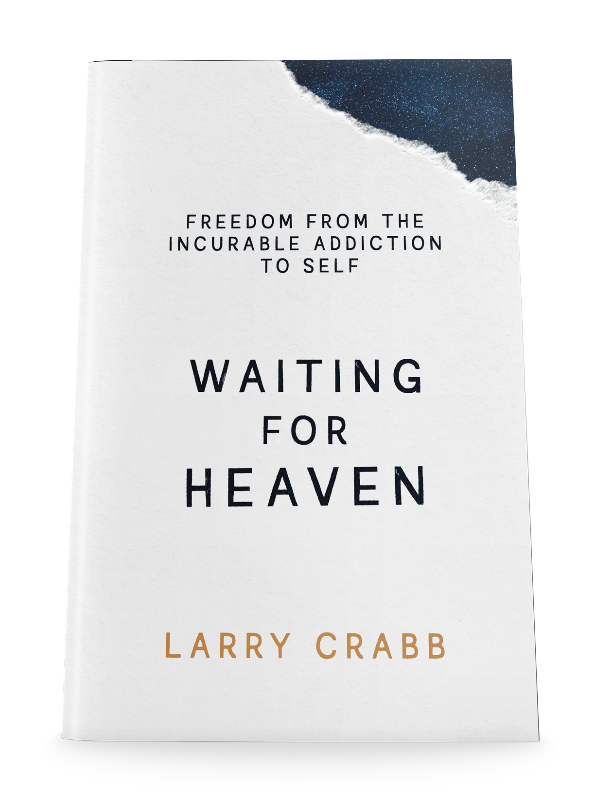 Waiting for Heaven book paperback cover