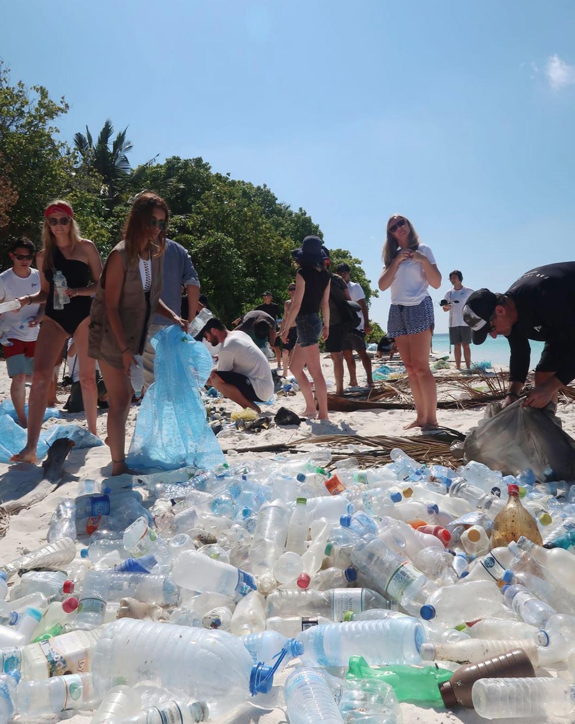 people handling plastic bottles waste on a beach
