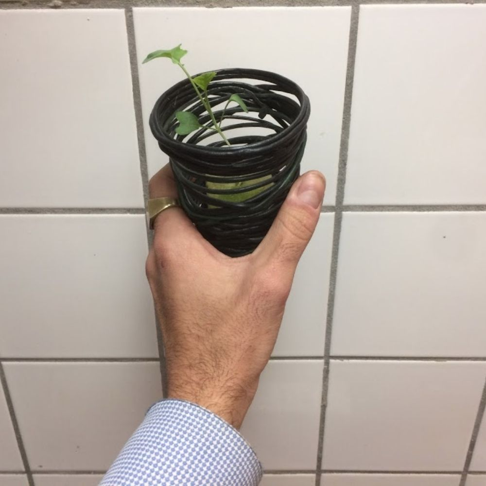 Recycled plastic hydroponic vase