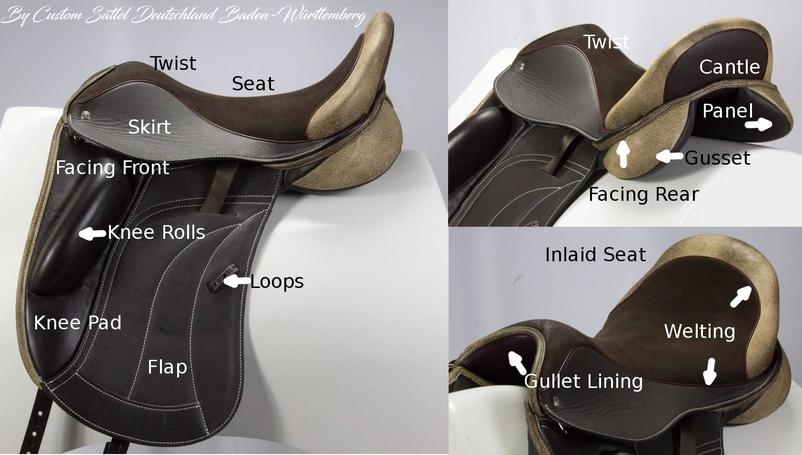 Diagram of saddles that can be repaired by Saddle C.P.R.