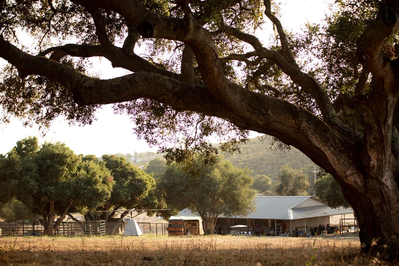 Ranch-4