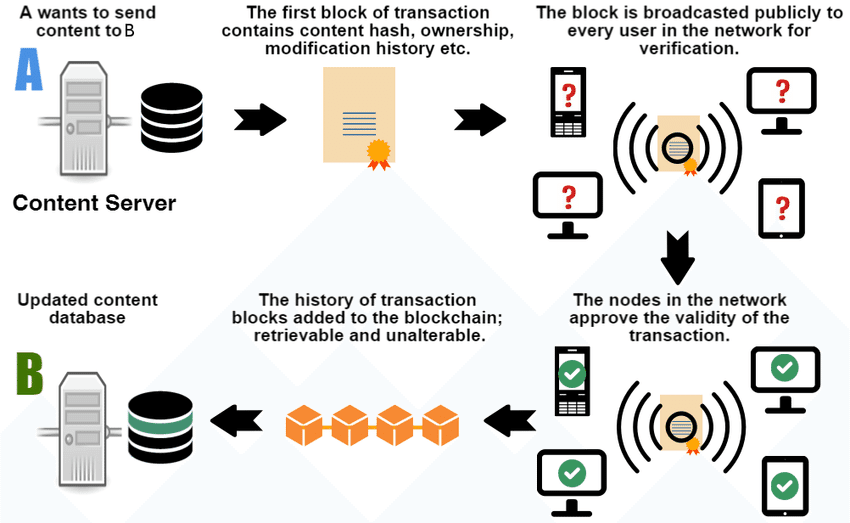 Steps of a cryptocurrency transaction in a blockchain network