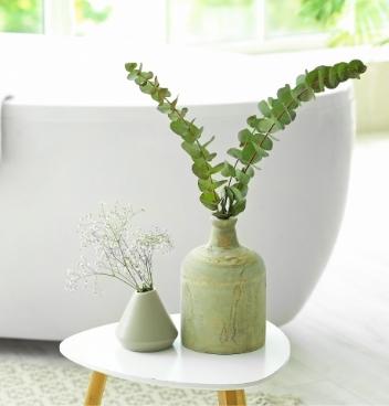 Plants in vase.