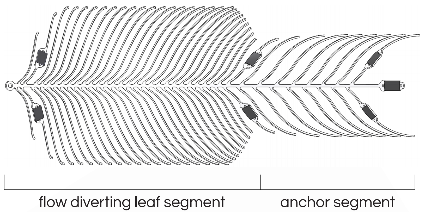 Illustration showing the size of the flow diverting leaf segment and the anchor segment.