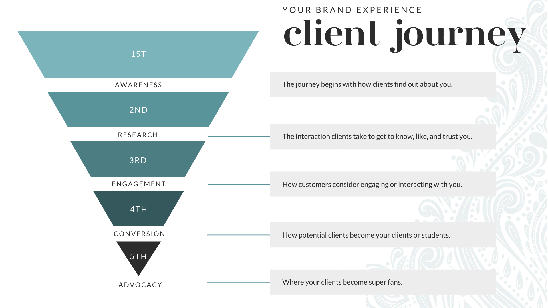 Understanding your client journey is an important part to creating a brand and website that transforms visitors into clients.