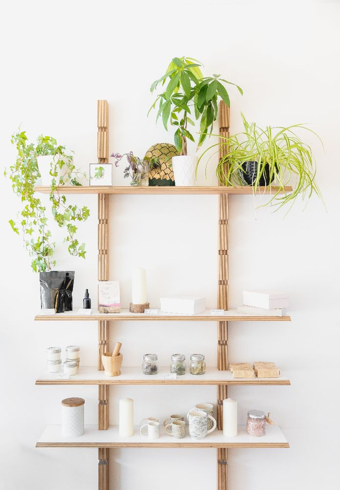 shelf full of plants and interior design things