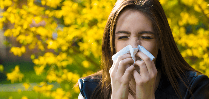 Allergy Treatment Services