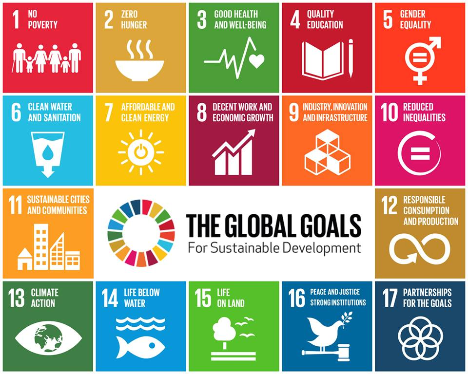 C3 boosts UAE's contribution to the UN Sustainable Development Goals