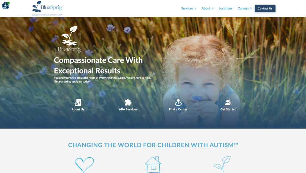 bluesprig autism home page screenshot above the fold
