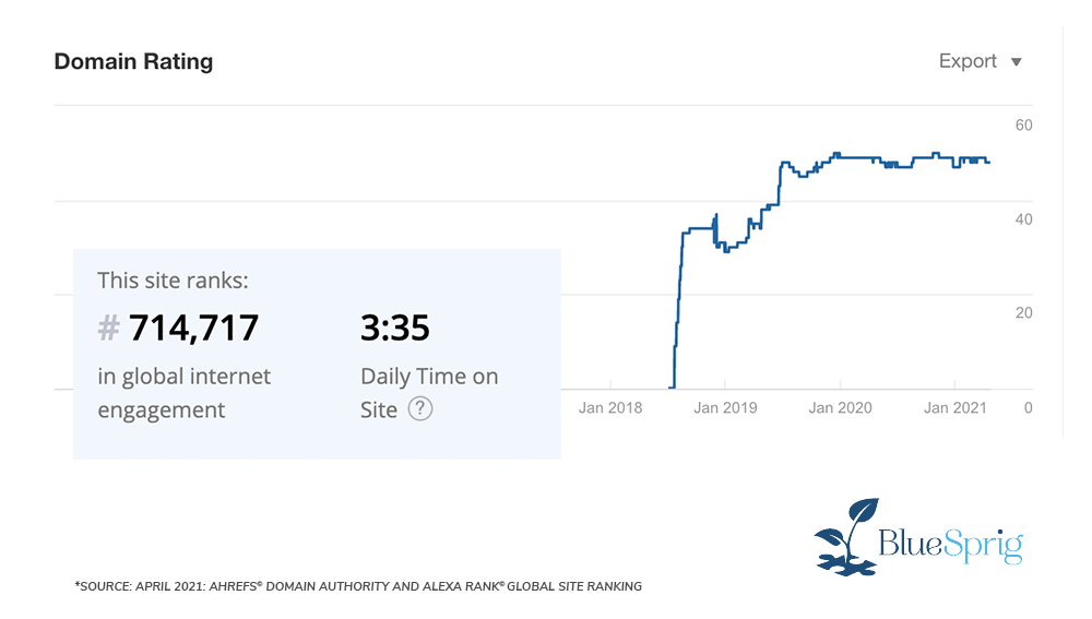 bluesprig autism dashboard showing incredible marketing results