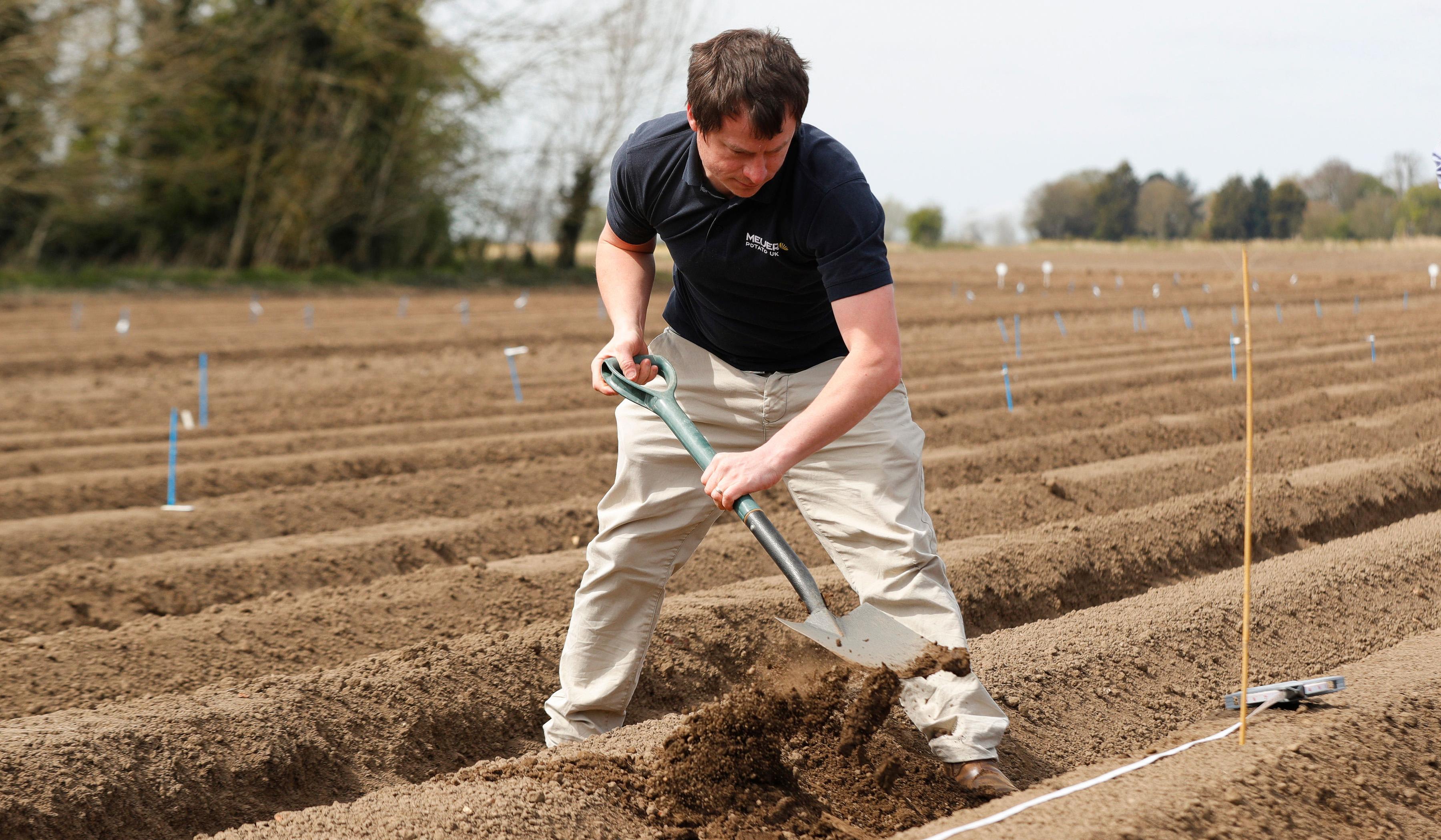 Meijer Potato install Soil Scout sensors
