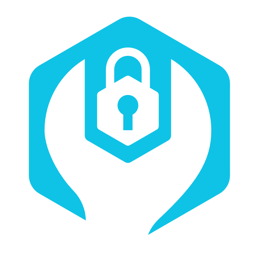 Green Belt: Web Application Security Testing