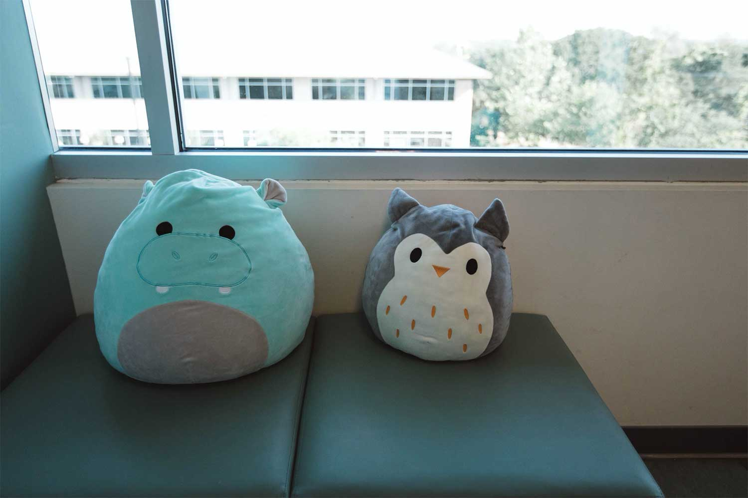 Photo of two stuffed animal pillows on a bench.