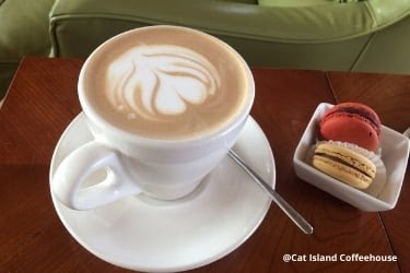 Coffee from Cat Island Coffeehouse