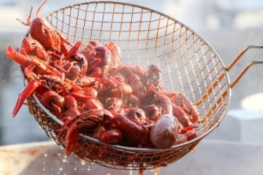Boiled crawfishes coming out of the pot