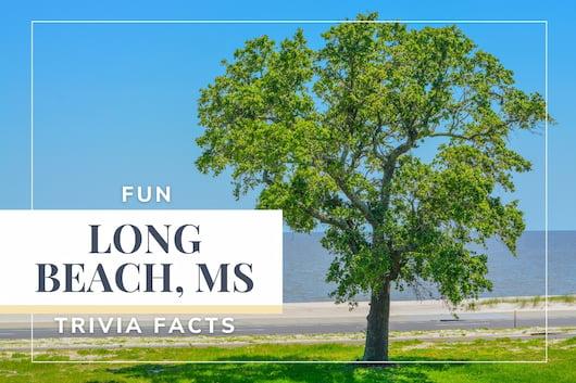 Long Beach, MS Trivia Facts - Tree at Long Beach