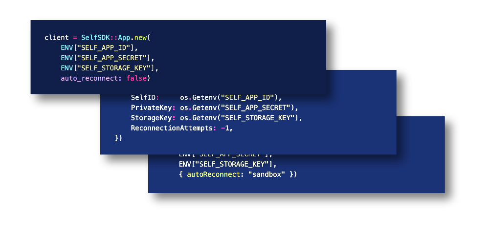 Self code samples in Ruby, Go and Typescript