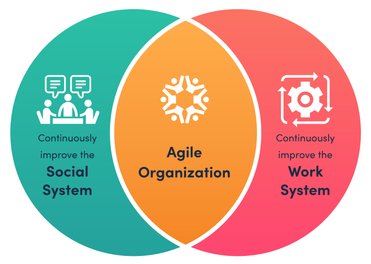 Pie Chart of Agile Organization, consisting of continuously improving the social system and continuously improving the work system.